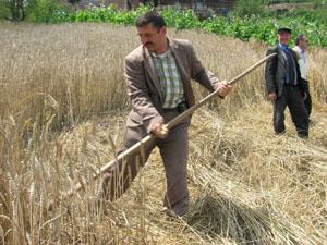 """Çiftçi Sendikaları """"G8 Karşıtı Buluşma""""daydı."""