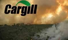 Bursa Valiliği Yasaya Karşı Geliyor, Cargill'i Kapatmıyor