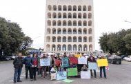 Fındık üreticileri: küresel sömürüye karşı küresel dayanışma