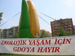 balon_bursa_30nis08_2.jpg
