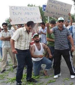 Mersin'de çiftçi eylemi