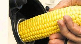 Gıda Krizi Ve Biyoyakıtlar