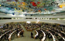 Köylü Hakları BM'de