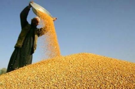 Gıda krizi karşısında agroekoloji / Umut Kocagöz