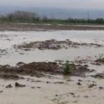 Tarım arazilerini su bastı
