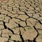 Çiftçiler, suyun damlasını kullansın! / Abdullah Aysu