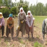 Çiftçi bilgileri ortalığa saçıldı