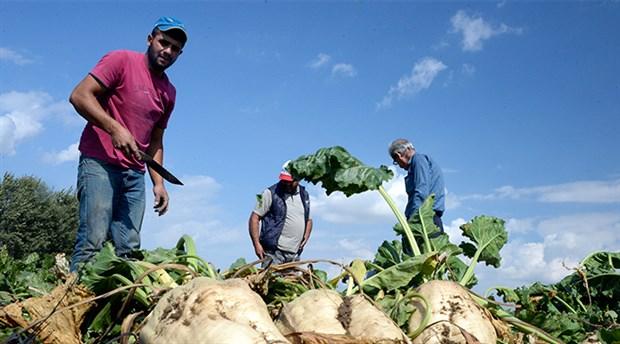 Çiftçilik geçim değil dert kaynağı