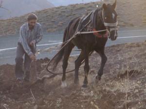 Çiftçi krediyle ayakta durmaya çalışıyor