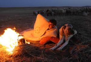 Milli Tarım Projesi ve Hayvancılık / Abdullah Aysu