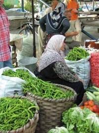 Mevsimlik İşçiler: Tarımın Ücretli Köleleri