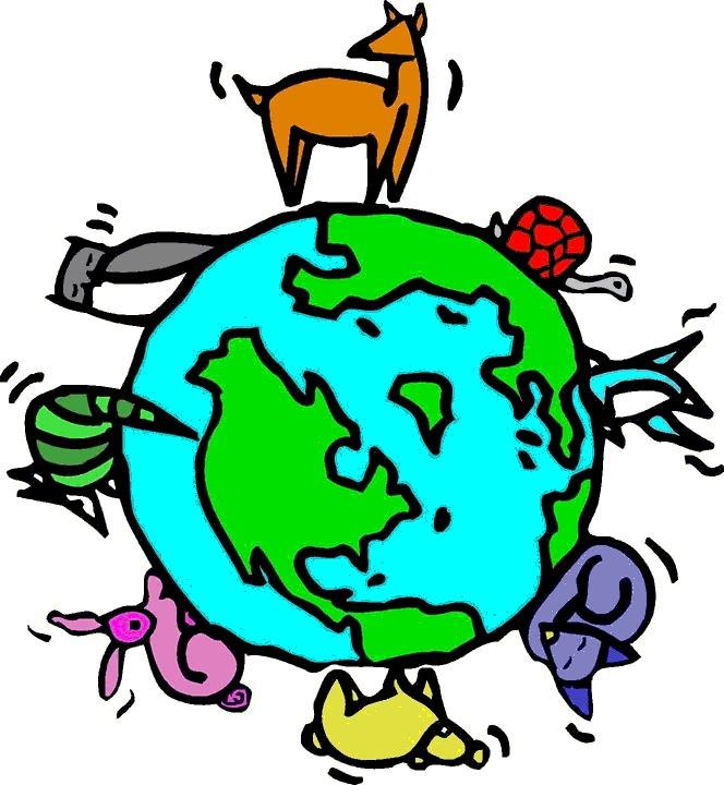 Agroekolojiye neden ihtiyacımız var? / Özge Güneş