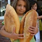 Fakirin ekmeği buğday, serbest piyasaya terk edilemez!/ Abdullah AYSU