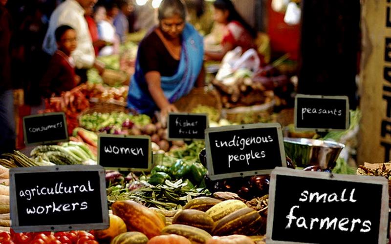 Tüketici Topluluklarından Gıda Egemenliğine: Tüketim Kooperatiflerinin İmkânı / Umut Kocagöz