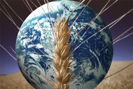 Enerji yatırımları ve ekolojik tahribat / Adnan Çobanoğlu