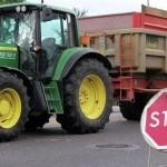 Biyogüvenlik Kurulu'nun GDO'lu mısır açıklaması da skandal… / Ali Ekber Yıldırım