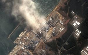 Japon tarımında radyasyon tehdidi