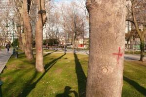 Rençber Gözüyle-Gezi Parkı ve çevrecilik / Abdullah Aysu