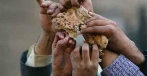 'Gıda krizi sosyal patlamaları ve devrimleri kaçınılmaz kılabilir'