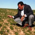 Tarımda destekler artıyor   /  Abdullah AYSU