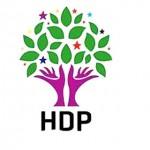 HDP'nin tarım beyannamesi /  Abdullah Aysu