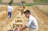 Şirket gıda sistemi karşısında köylü bağımsızlığı / Umut Kocagöz
