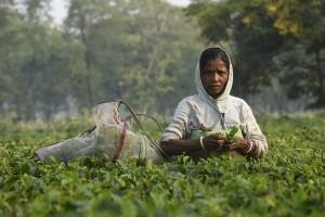 Bir fincan çayın bedeli: onur kırıcı bir yaşam