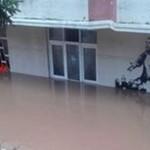 Hopa'da yağmur nasıl felakete dönüştü?
