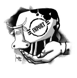 TEPAV: Et ithalatı çözüm değil
