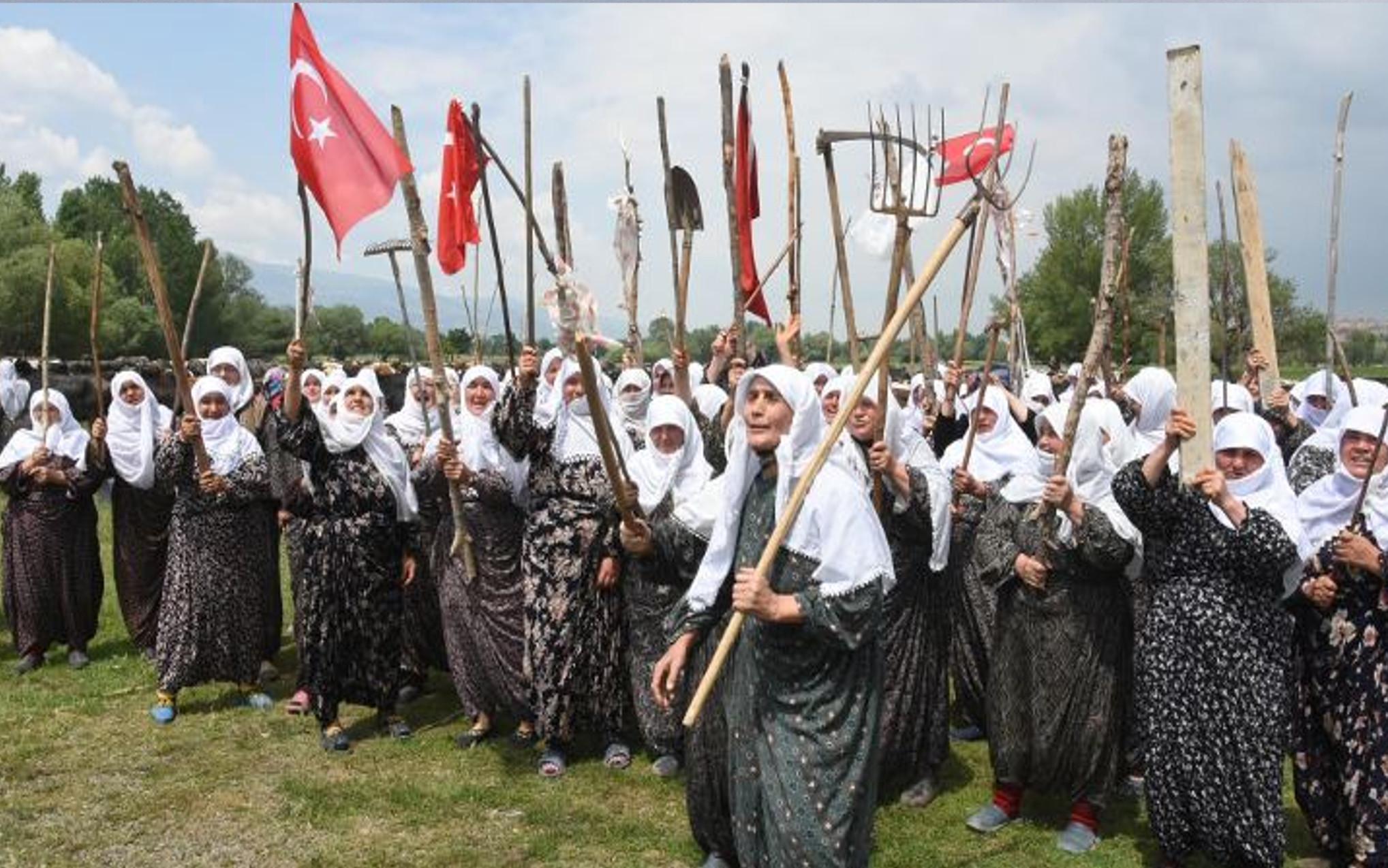 Zeytinlikler ve Toplumun Kaderi  / Umut Kocagöz