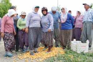 Tarım Bakanı Eker'den müthiş açıklama/KORAY ÇALIŞKAN