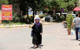 71 yaşındaki kadın kesilen ağacını sırtlanıp belediyenin kapısına dayandı