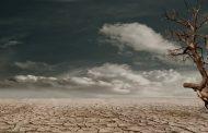 Kıtlık kapıyı tıklıyor / Abdullah Aysu
