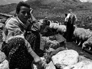 Tarım 2016 / Abdullah Aysu
