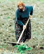 Ferrero İtiraf etti: Tarım Bakanlığı İle Çalışıyoruz