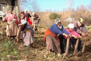 Çiftçilerin tarımı terk ettiği Türkiye yurt dışında tarım arazisi kiralayacak