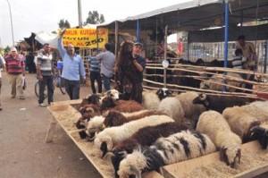 Üretici, bayramdan sonra et fiyatlarında bir değişiklik beklemiyor