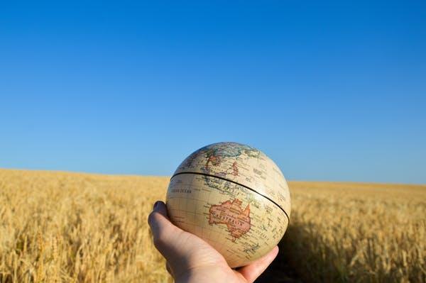 Tarımın geleceği için mücadelede bilmeniz gerekenler /Michel Pimbert -Colin Anderson