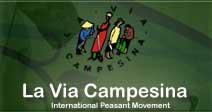 Via Campesina Ofislerine Saldırı