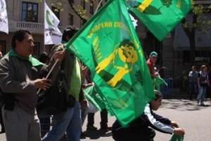 La Via Campesina Çiftçileri  Madrid'te AB'nin neoliberal ajandasına karşı seferber oldu
