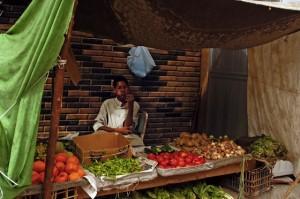 Mısır hem GDO'yla, hem de gıda fakirliğiyle savaşıyor