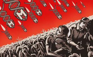 Tohumda Açlık ve Millilik Aldatmacası / Fatih Özden