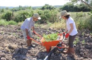Hükümetin genç çiftçilere destek kararına, kırsala dönüşü tartışan gençler ne diyor?