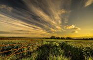 Milli Tarım Projesi ve ova koruma alanları / Abdullah Aysu