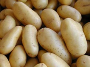 Eyvah patatesten plastik ürettiler