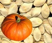 Tohum ve Gıda Emperyalizmi