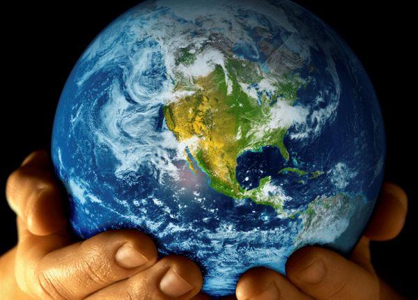 İklim: Gerçek Problem, Yanlış Çözümler 3: REDD+