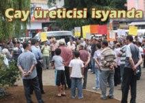 GDO'LARIN VERİMİ ARTIRDIĞI SÖYLEMİ DOĞRU DEĞİL. (1)