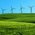 Zeytinliklerde yenilenebilir enerji tesisleri kurulabilecek