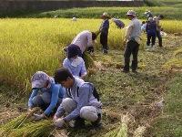 Toprak, Çiftçi ve Tüketiciyi Birlikte Düşünen Doğa Dostu Doğal Tarım (Röp. Yasunori SAKO)